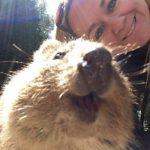 Por qué debemos dejar de hacernos 'selfies' con los animales salvajes