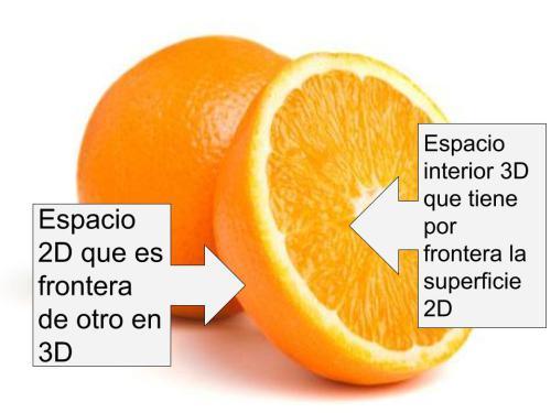 El volumen de la naranja, la pulpa, tiene tres dimensiones. La piel de la naranja es su frontera y es una superficie de dos dimensiones.