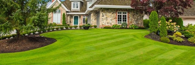 lawncare-header-1-640x216
