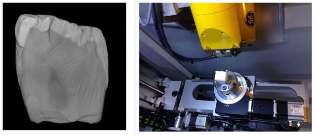 Izquierda: Imagen 3D del diente ATD6-92 (Foto: L. Martín-Francés). Derecha: análisis de un fragmento de esmalte por µCT-scan (Foto: L. Martín-Francés).