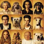 Dios los cría y ellos se juntan. ¿Se parecen nuestros perros a nosotros?