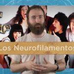 Neuropíldoras 17: los neurofilamentos