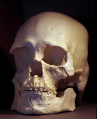 Cráneo del hombre de Kennewick