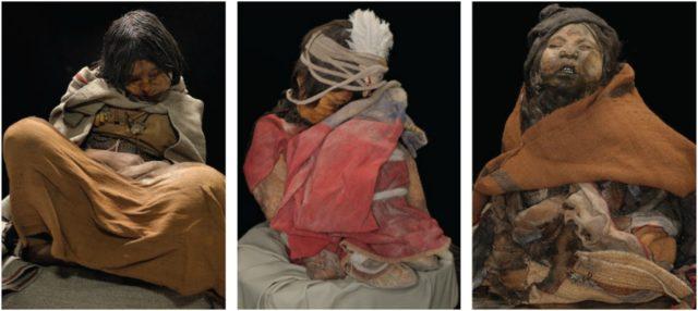 Momias de los Niños de Llullaillaco: La Doncella, El Niño y La Niña del Rayo.