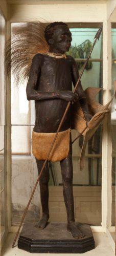 Negro de Banyolas en su vitrina del Museo Darder