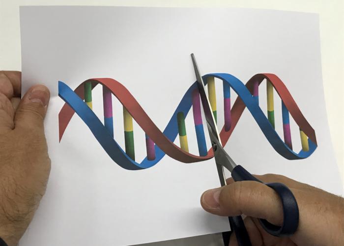 Nueva generación de editores genéticos: mas allá de CRISPR