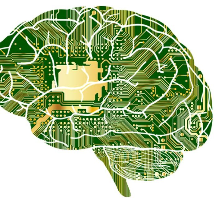 El cerebro ético programado