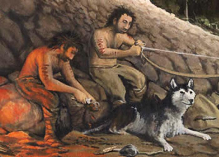 El mito del perro alfa